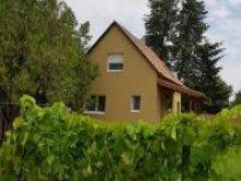 Casă de oaspeți Nagybajcs, Casa de oaspeți Forrás