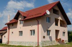 Accommodation Bumbești-Pițic, Aly B&B