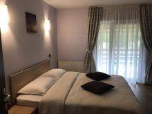 Accommodation Leliceni, Vila Granada
