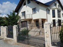 Accommodation Hungarian Cultural Days Cluj, Big City Rooms&Apartments