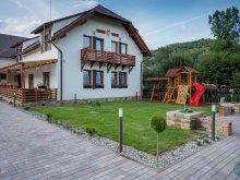 Apartament Transilvania, Pensiunea Farkas