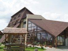 Panzió Alsójára (Iara), Tichet de vacanță, Andreea Panzió