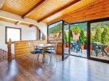 Accommodation Timișu de Jos, Ivett Guesthouse
