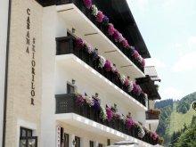 Apartament Saciova, Hotel Cabana Schiorilor
