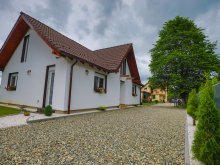 Vacation home Sibiu county, Diana Confort Guesthouse