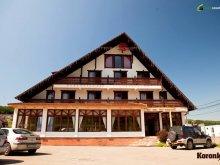 Accommodation Bălăușeri, Koronka Guesthouse