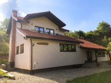 Accommodation Bucea, Ioana Guesthouse