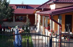 Guesthouse Tulcea county, Maioru Guesthouse