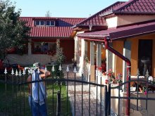 Vendégház Tulcea megye, Maioru Vendégház
