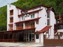 Szállás Krassó-Szörény (Caraș-Severin) megye, Tichet de vacanță, Versant Panzió