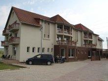 Accommodation Cluj county, Vila Gong