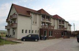 Szállás Gesztrágy (Straja (Căpușu Mare)), Vila Gong