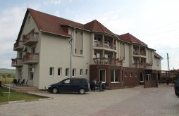Vendégház Sâncraiu Almașului, Vila Gong