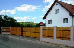 Casă de oaspeți Voivozi (Popești), Podgoria Guesthouse