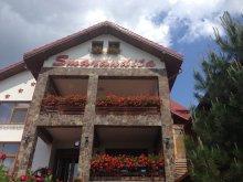 Cazare Bârgăuani, Pensiunea Smărăndița