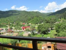 Accommodation Gura Siriului, Neagu Vacation home