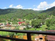 Accommodation Siriu, Neagu Vacation home