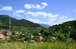 Casă de vacanță Blidari (Dumitrești), Casa de vacanță Neagu