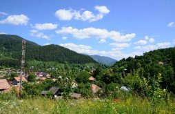 Casă de vacanță Gura Teghii, Casa de vacanță Neagu