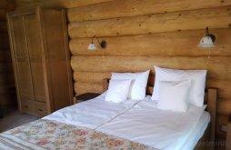 Cazare Tranișu cu Vouchere de vacanță, Casa din vale