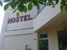 Hostel Bălănești, Hostel Fundația Link