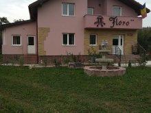 Casă de oaspeți Satu Nou, Casa Floro