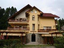 Villa Bistrița Bârgăului Fabrici, Iulia Villa