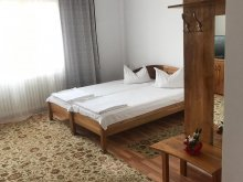 Accommodation Băile 1 Mai, Selim Guesthouse