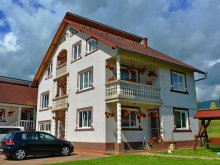 Package Nord Vest Thermal Bath Park Satu Mare, Tincu B&B