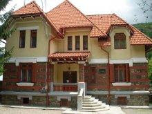 Panzió Pucheni (Moroeni), Micșunica Vendégház