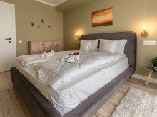 Fesztivál csomag Weekend Telep Élményfürdő Marosvásárhely, Ares ApartHotel - 310 C3 Apartman