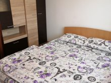 Accommodation Bârgăuani, Florin Apartment