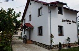 Apartament Udrești, Pensiunea Ioana