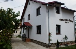 Apartman Udrești, Ioana Panzió