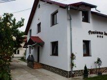 Szállás Argeș megye, Ioana Panzió