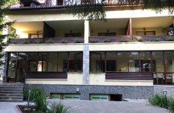 Guesthouse Azuga, Serana B&B