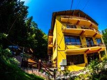 Szállás Vâlcea megye, Trei Brazi Hotel