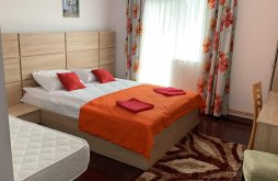 Accommodation Spinu, Club Dioda B&B