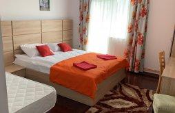 Apartament Stoenești (Berislăvești), Pensiunea Club Dioda