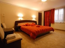 Accommodation Braşov county, Italiana B&B