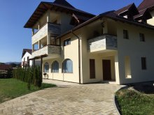 Vacation home Bistrița Bârgăului Fabrici, Șaru Dornei Vacation home