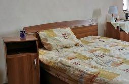 Guesthouse Satu Mare, Cosmina Guesthouse