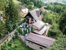 Villa Székelyszentmiklós (Nicoleni), Regal Villa