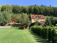 Accommodation Sâncrai, Travelminit Voucher, Hetvezer Guesthouse