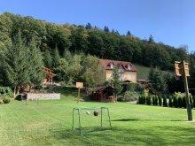 Bed & breakfast Barajul Zetea, Hetvezer Guesthouse