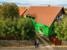 Accommodation Ciumani, Csergő Ildikó Guesthouse