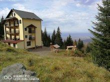 Hotel Krassó-Szörény (Caraș-Severin) megye, Muntele Mic Hotel & Étterem