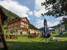 Villa Pleșoiu (Livezi), Alpin Panzió