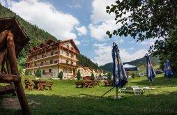 Villa Resinár (Rășinari), Alpin Panzió