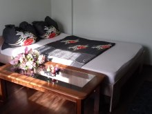Accommodation Durgău Lakes, Amo Apartment